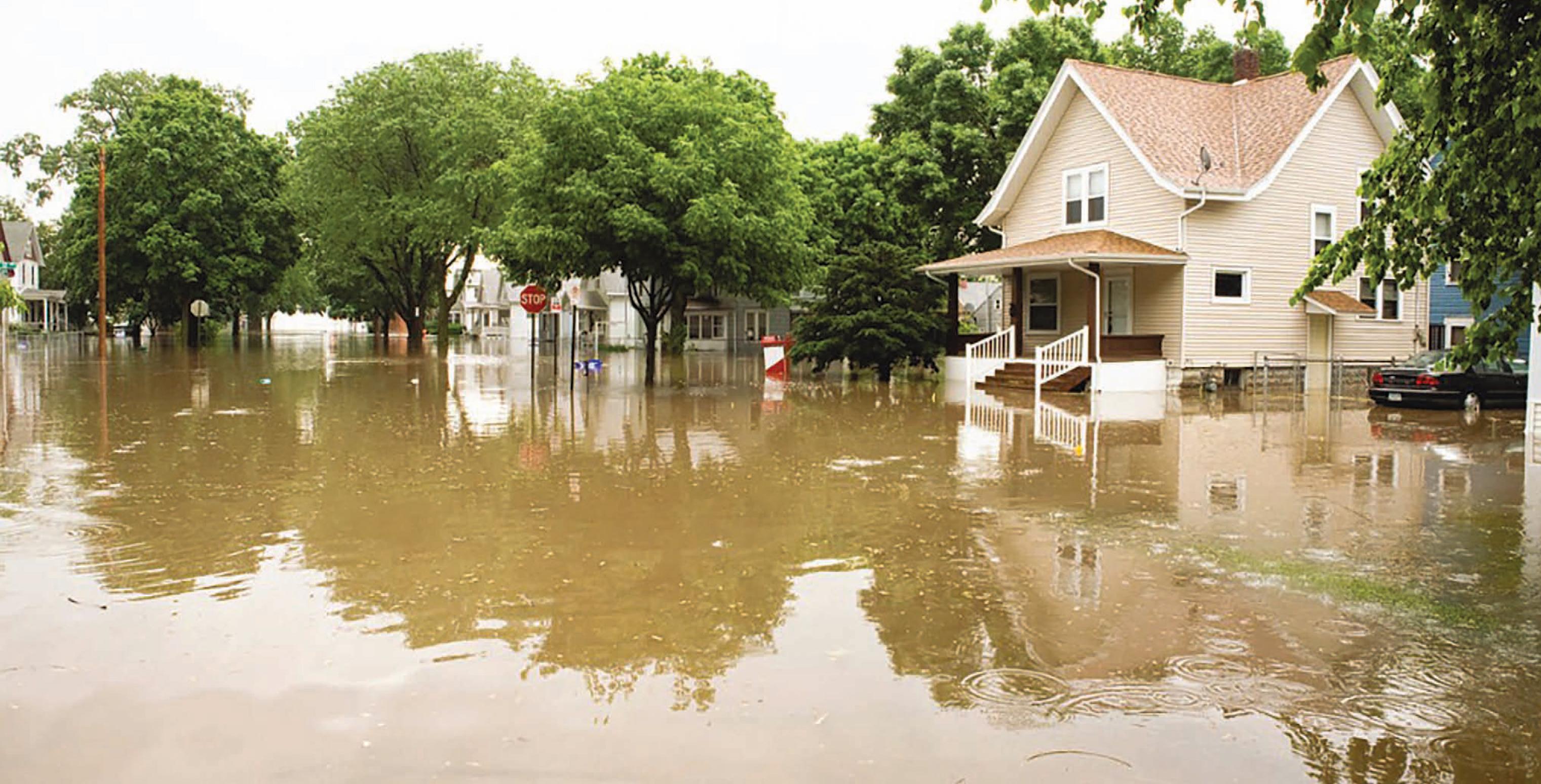 Flood damage Tampa