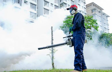 pest exterminator singapore